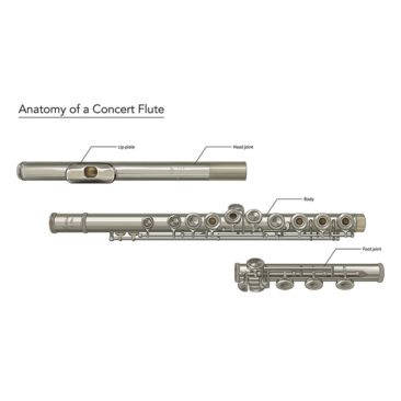 Diagram of a professional concert flute. <i>Adobe Illustrator and Photoshop